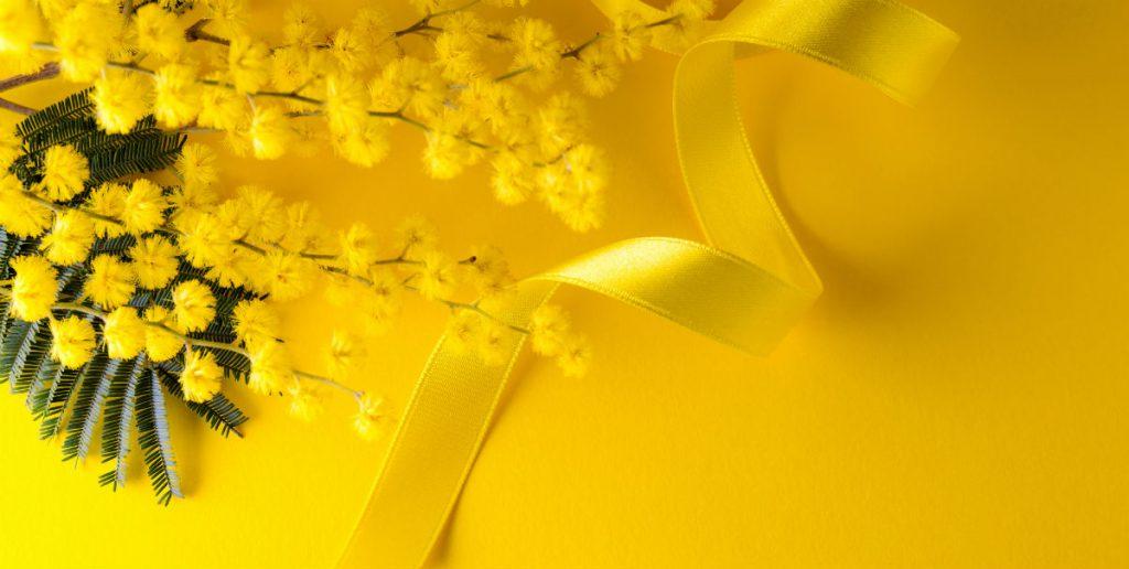 Comunicato Stampa di Ticket To Love per la Festa della Donna: nell'immagine una mimosa con fiocco giallo
